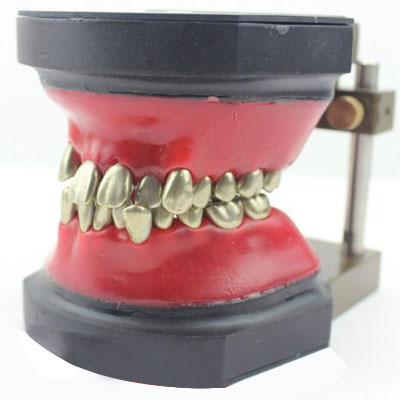 Giá khớp TYPODONT răng kim loại + gối sáp